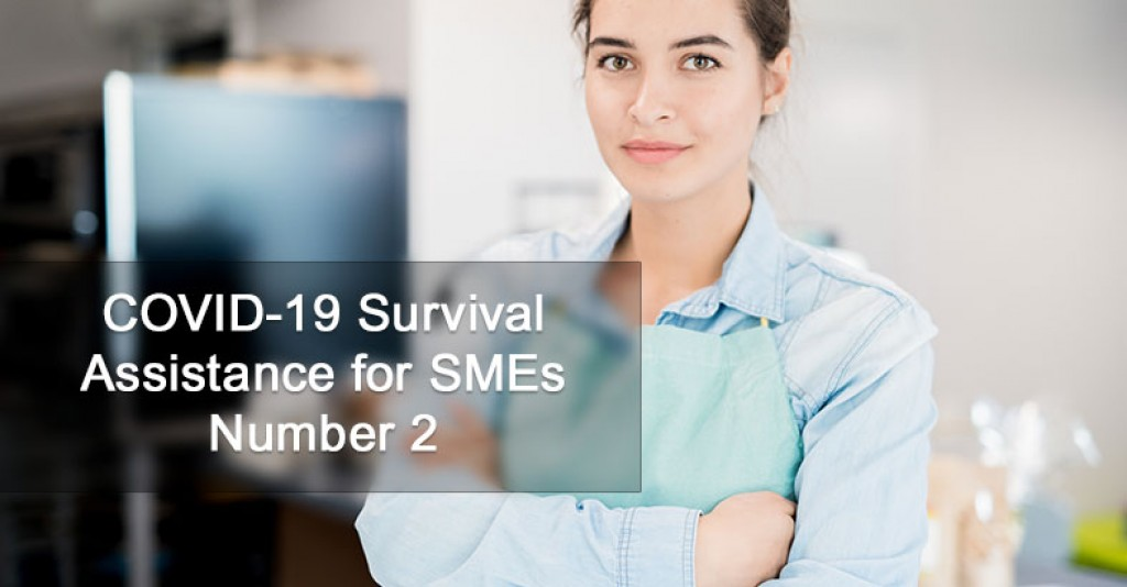 COVID 19 Survival Assistance for SMEs Number 2