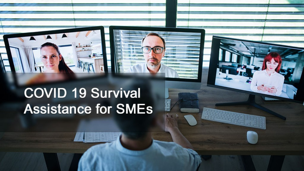 COVID-19 Survival Assistance for SMEs