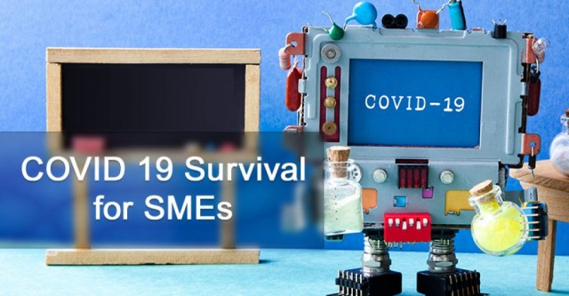 COVID 19 Survival Assistance for SMEs